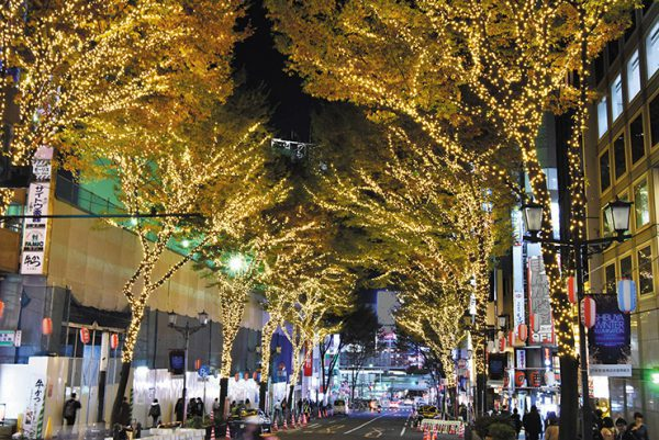 SHIBUYA WINTER ILLUMINATION 2019-2020 COLLECTIONS
